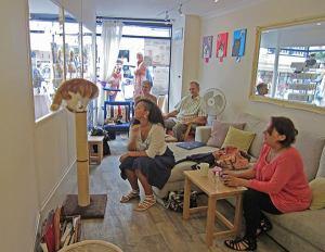 Totnes Cats Cafe