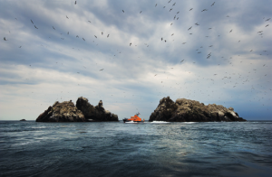 Alderney RNLI lifeboat off Les Etacs