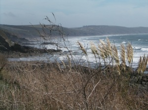 The treacherous Whitsand Bay from Portwrinkle to Rame Head